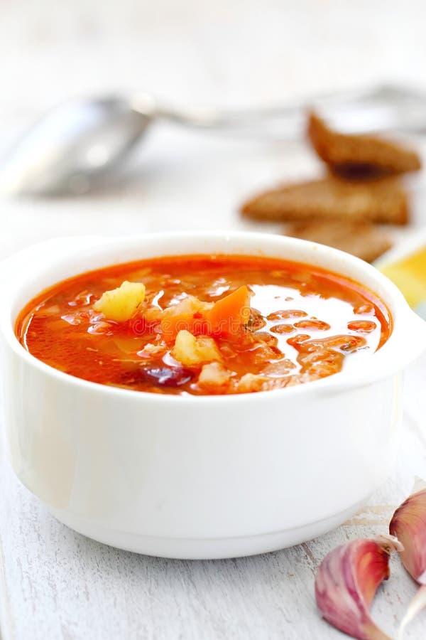Традиционный русский украинский vegetable суп борща стоковая фотография rf