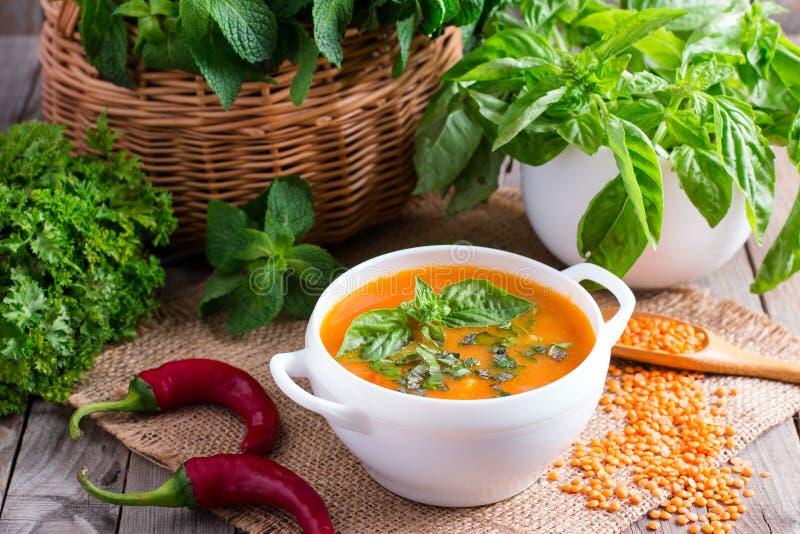 Традиционный турецкий суп с булгуром и чечевицами стоковое изображение