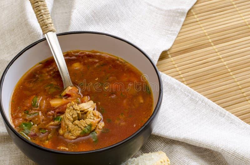 Традиционный украинский русский борщ овощного супа, с трудной сливк хлебцы рож петрушки стоковое изображение