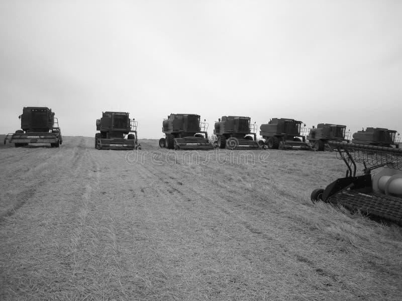 тракторы обоза стоковое фото