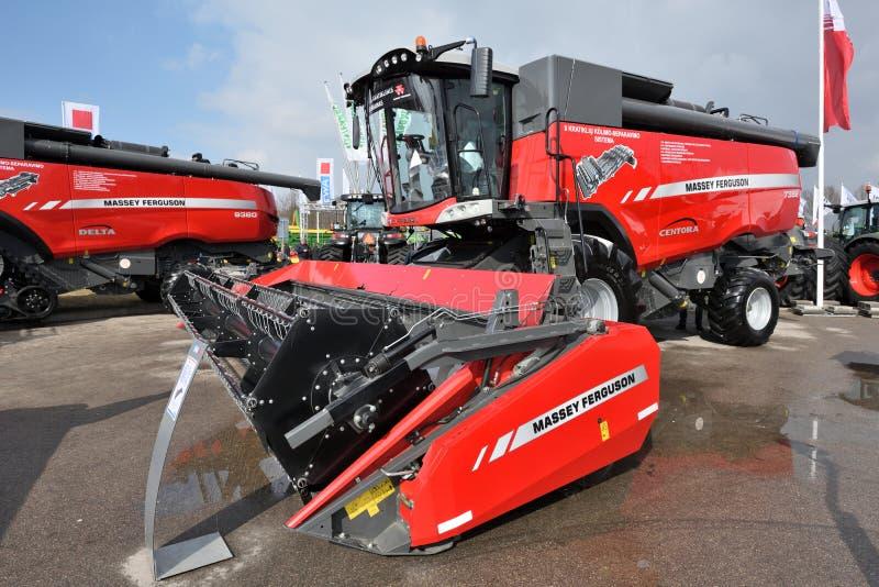 Тракторы Massey Ferguson стоковое фото