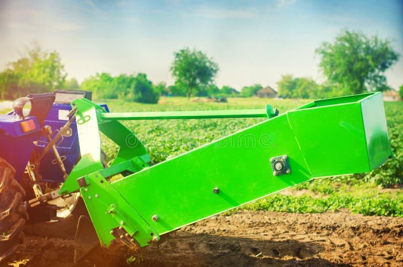 Трактор в поле с плужком для выкапывая картошек жать, сезонными работами, свежими овощами, агро-культурой, сельским хозяйством, к стоковая фотография