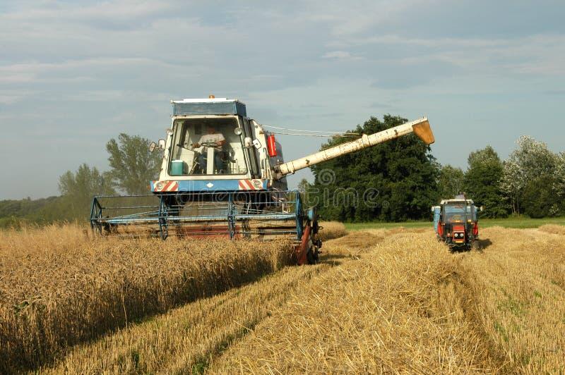 трактор жатки стоковое изображение rf
