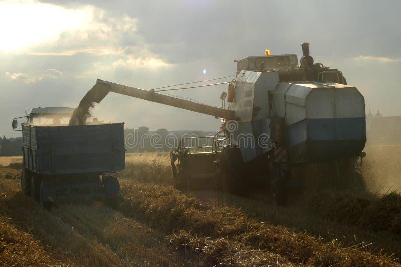 трактор жатки стоковые фото