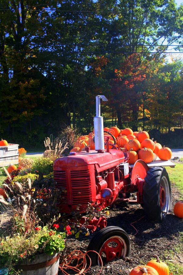 Трактор и тыквы стоковая фотография rf