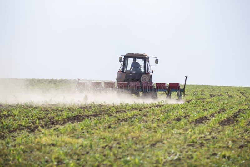 Трактор кладет дальше поле пшена стоковое изображение