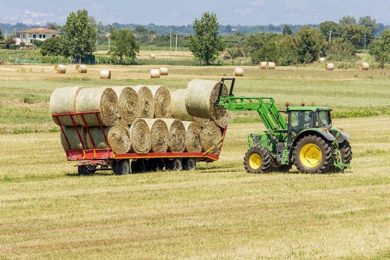 Трактор нагружая круглые связки сена на трейлере для перехода к назначению в тосканской сельской местности, Италии стоковое фото
