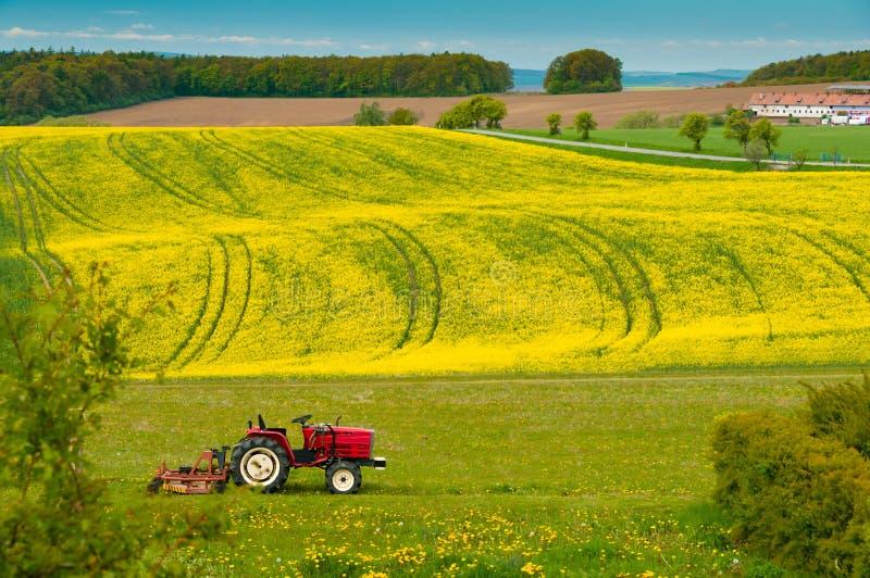 Трактор работает на поле стоковое фото