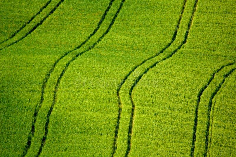 трактор следов полей стоковое изображение rf