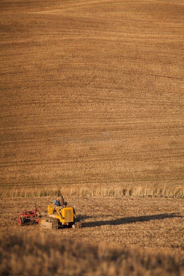 Трактор фермера вспахивая поле стерни пшеницы и культивировать, земледелие стоковое изображение rf