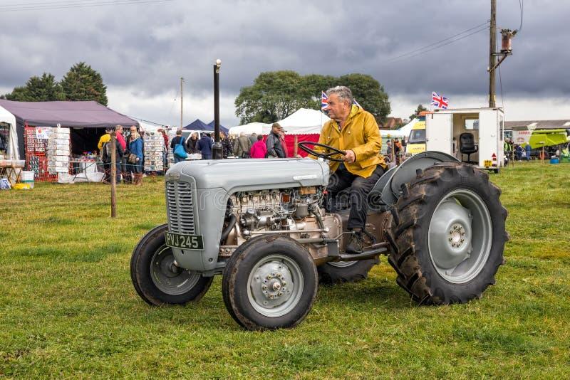 Трактор Ferguson 35 стоковое фото rf
