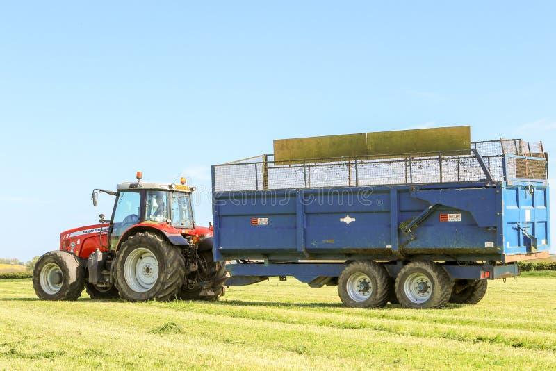 Трактор Massey Ferguson вытягивая трейлер в поле травы стоковые изображения