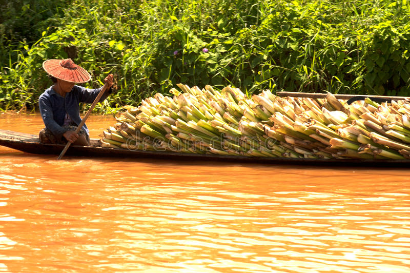 Транспорт в озере Inle, Мьянме стоковые изображения rf