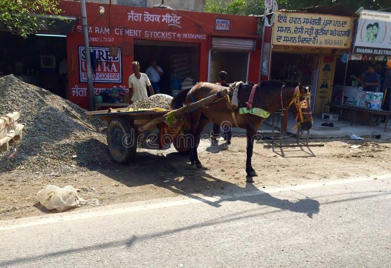 Транспорт нарисованный лошадью материальный в Пенджабе стоковые фотографии rf