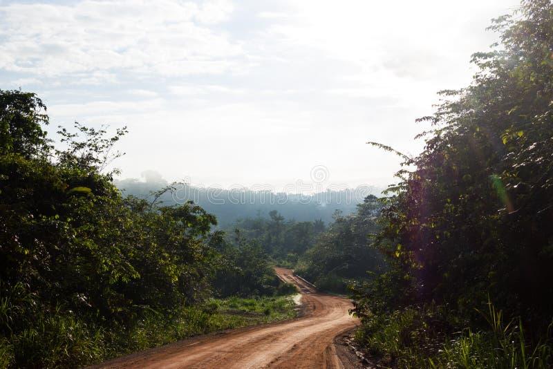 Транс-амазонское шоссе в Бразилии стоковое изображение rf