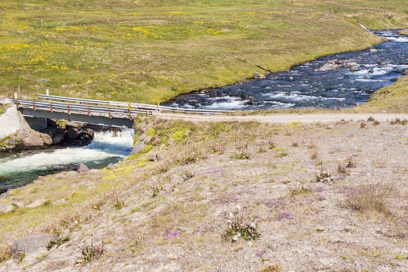 Трасса страны к селу Unadsdalur - Исландии, Westfjords. стоковая фотография rf