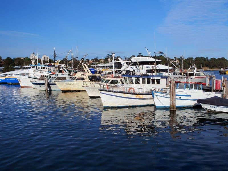Траулеры рыбной ловли, гавань Сиднея, Австралия стоковые фото