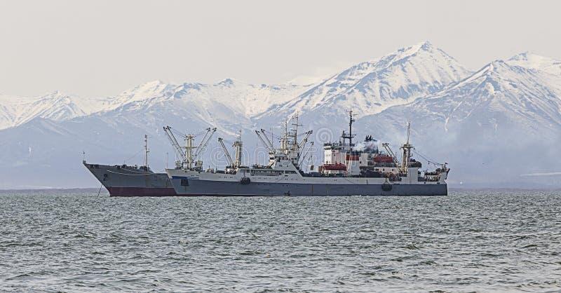 Траулер рыбной ловли в заливе на дорогах стоковые фото