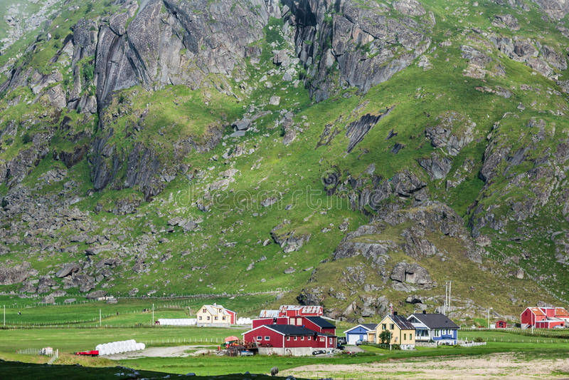 Традиционные норвежские красочные дома, острова Lofoten, Норвегия стоковое фото rf