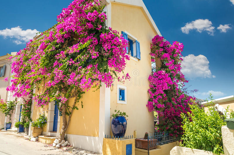 Традиционный греческий дом с цветками в Assos, остров Kefalonia, стоковые изображения rf