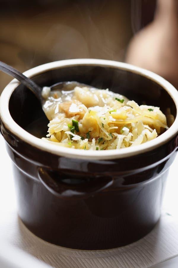 Традиционный польский суп капусты стоковые фото