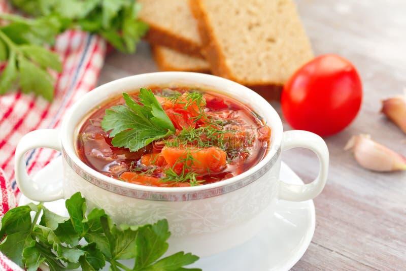 Традиционный русский украинский овощной суп стоковое изображение rf