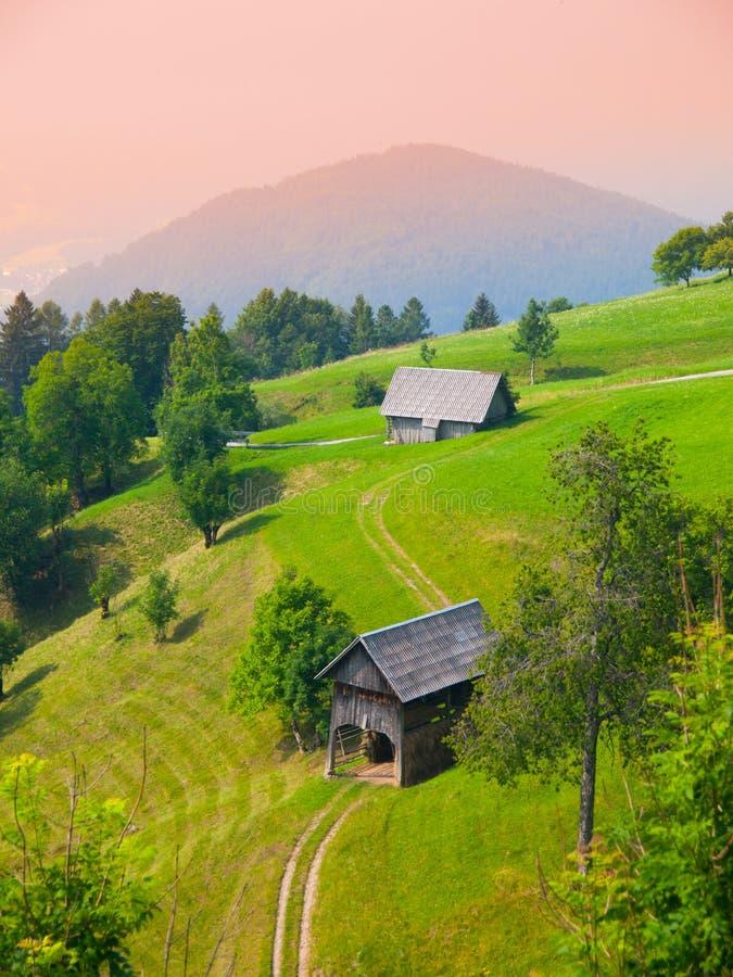 Традиционный словенский ландшафт горы стоковые фото