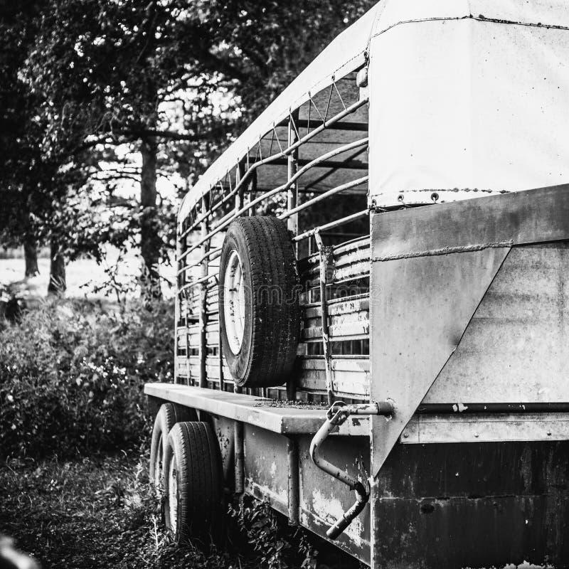 Трейлер поголовья припаркованный около древесин стоковые изображения rf