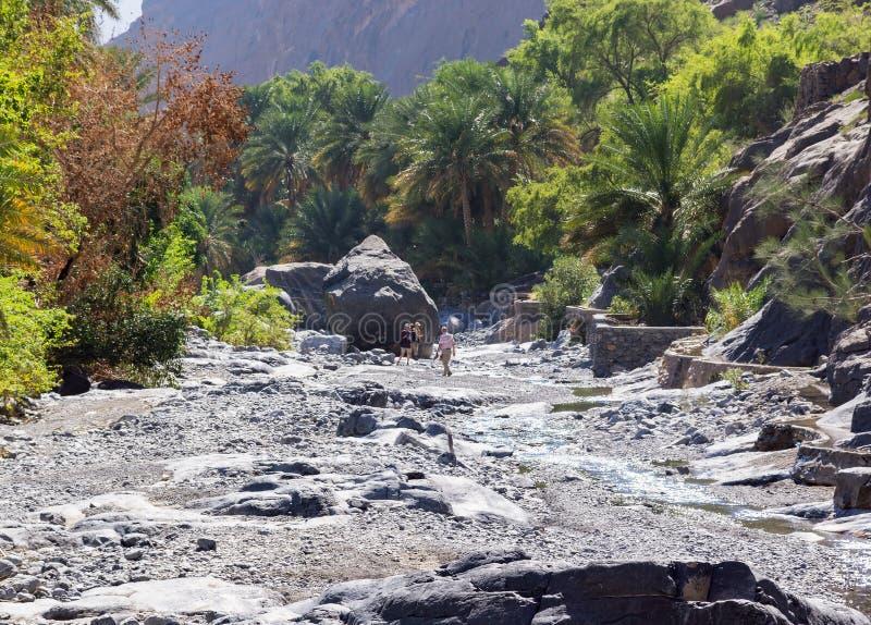 Трек в вадях Nakhr - Омане стоковое фото