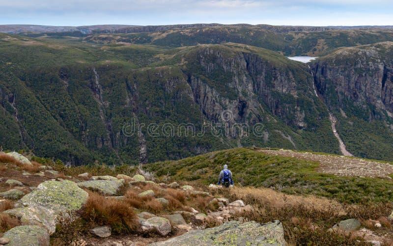 Трек через гору Gros Morne в осени стоковые изображения