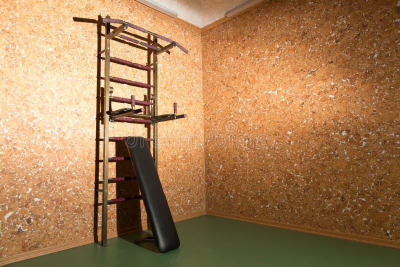 Download Тренер в комнате дома стоковое изображение. изображение насчитывающей тренер - 37925499
