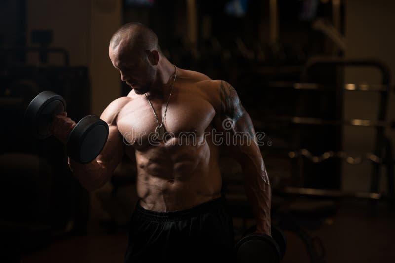 Тренировка бицепса с гантелями в спортзале стоковая фотография rf