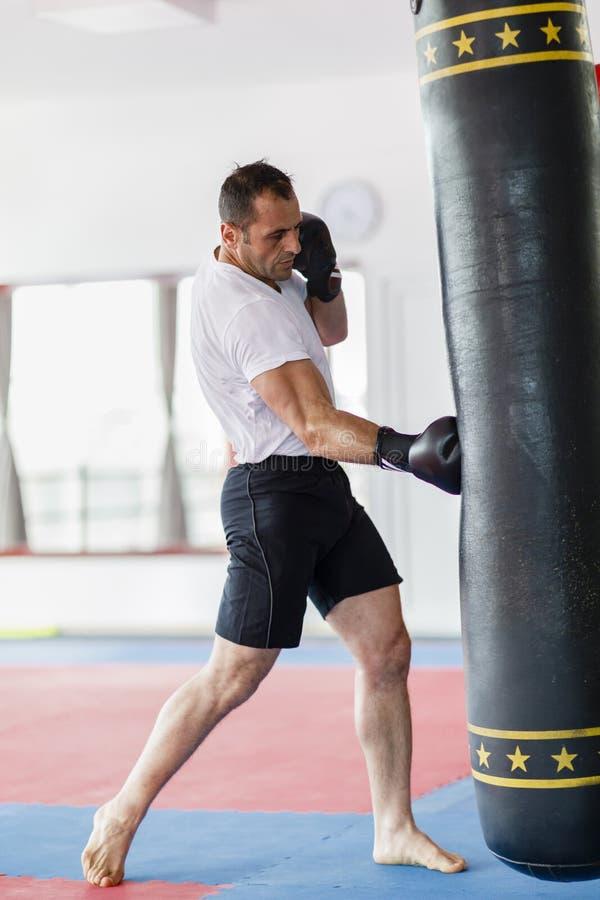 Тренировка бойца Kickbox в спортзале с сумками пунша, видит целый стоковые фото
