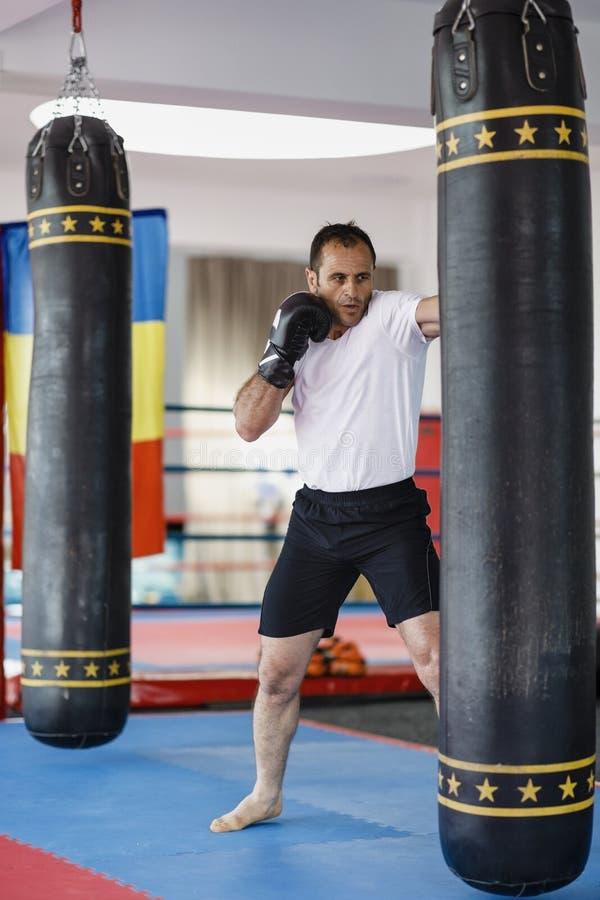 Тренировка бойца Kickbox в спортзале с сумками пунша, видит целый стоковое изображение rf