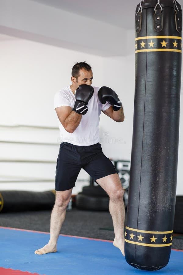 Тренировка бойца Kickbox в спортзале с сумками пунша, видит целый стоковые изображения
