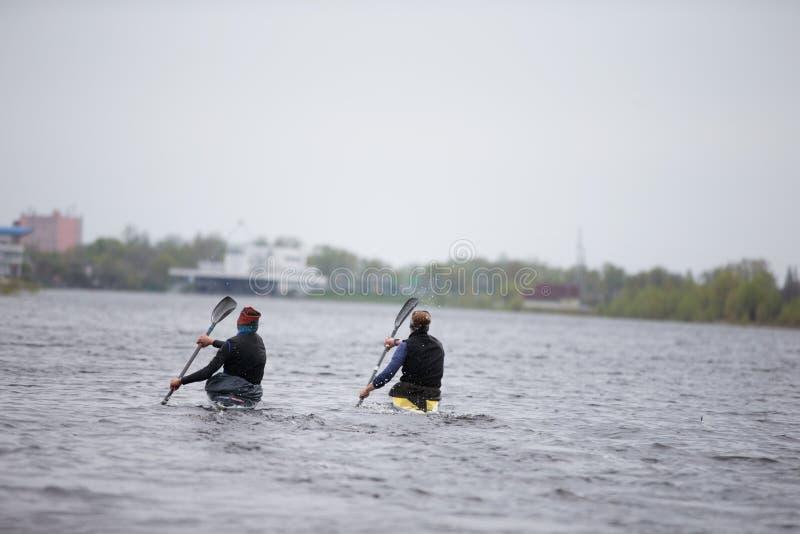 Тренировка в грести Спортсмены гребя с веслами стоковые изображения