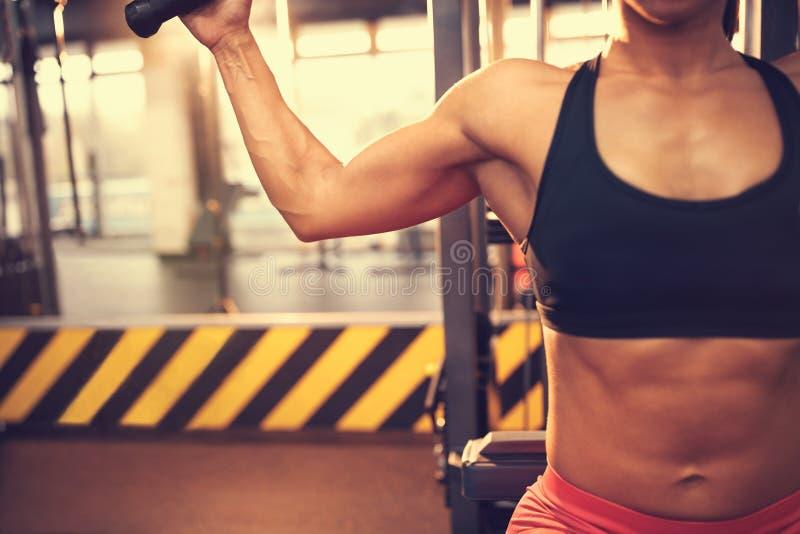 Тренировка в спортзале, концепция тела стоковое изображение rf