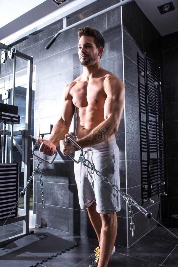 Тренировка молодого человека в гимнастике стоковое изображение rf