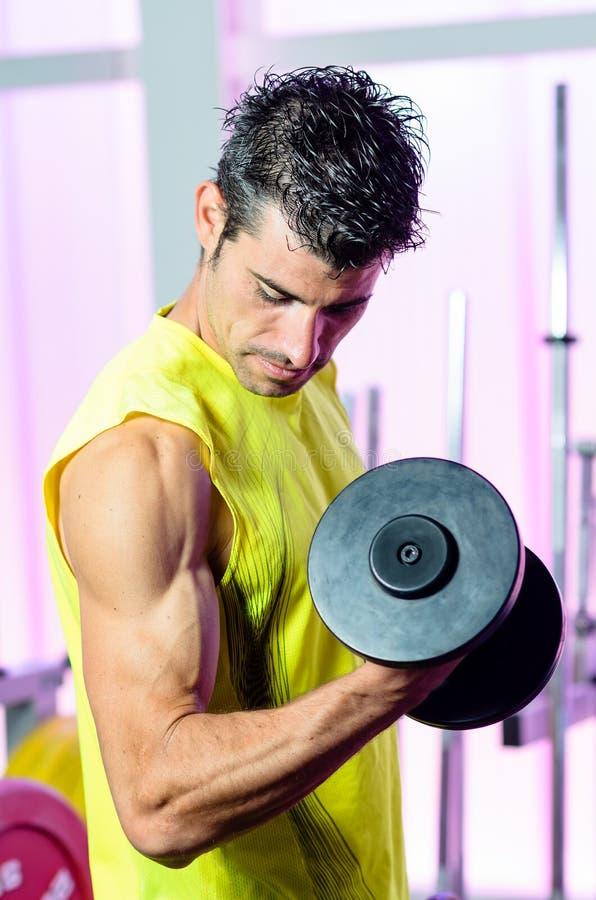 Тренировка мышцы бицепса стоковое фото
