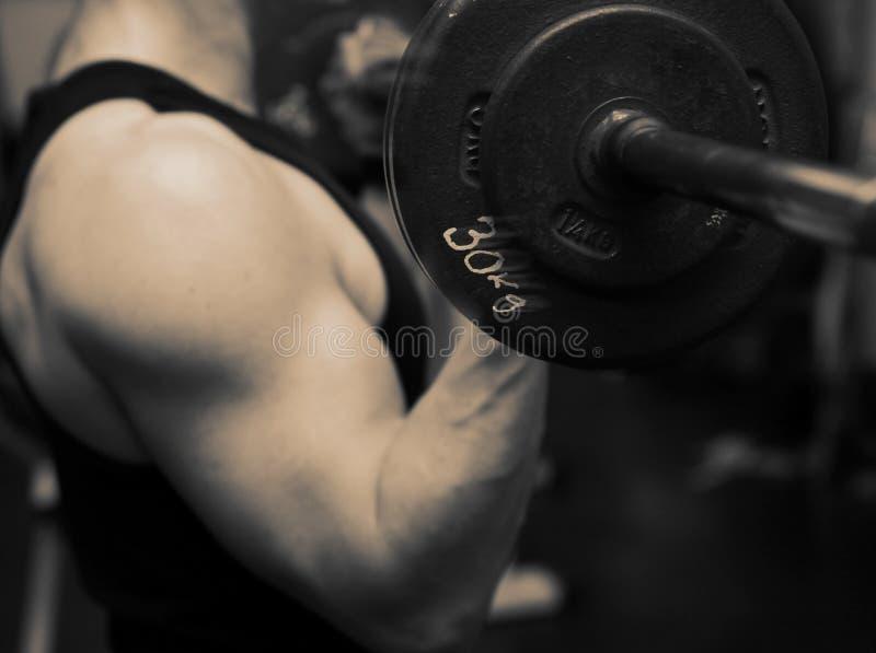 тренировка прочности гимнастики barbell стоковые изображения rf