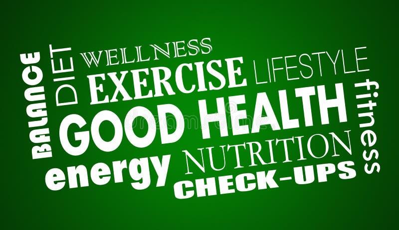 Тренировка фитнеса диеты питания хороших здоровий иллюстрация штока