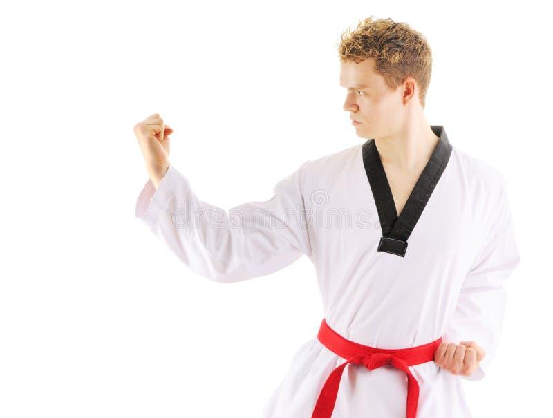 тренировка taekwondo человека стоковое изображение rf