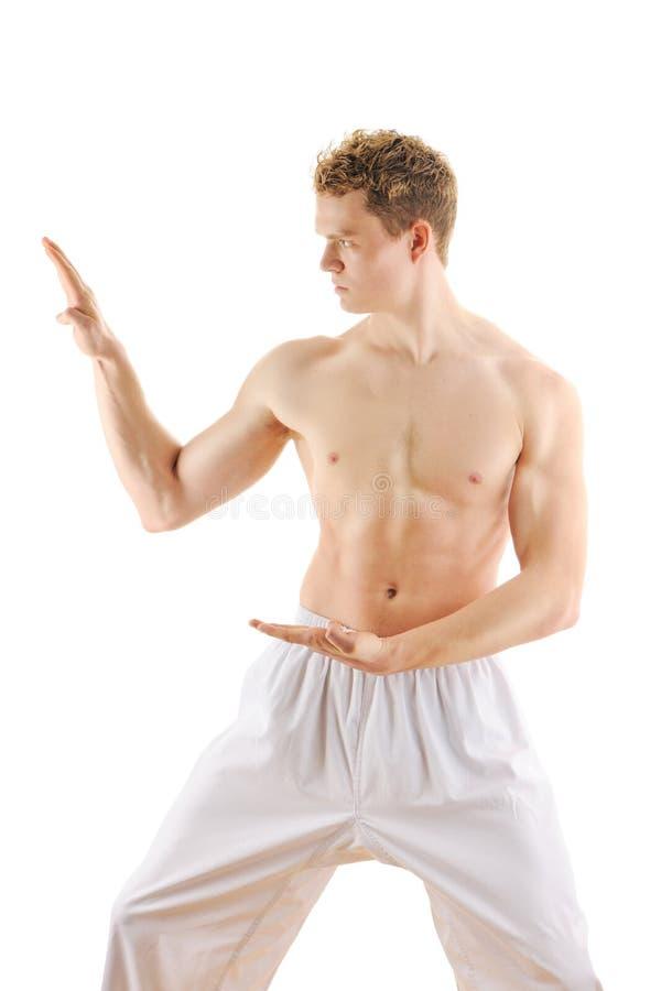 тренировка taekwondo человека стоковые изображения