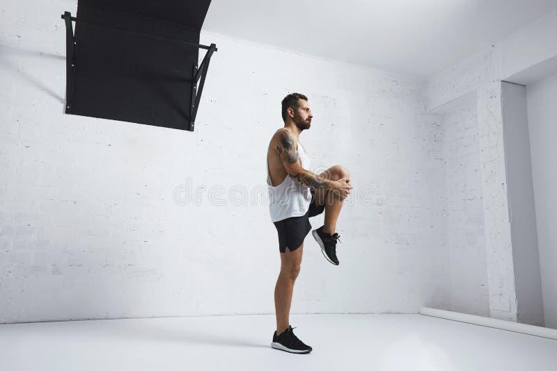 Тренировки Calisthenic и bodyweight стоковая фотография rf