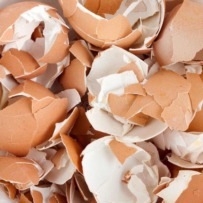 трескает eggshell стоковая фотография rf