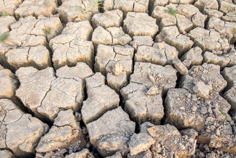 Треснутая и иссушанная сухая почва стоковое фото rf
