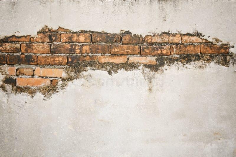 Треснутая конкретная кирпичная стена стоковая фотография