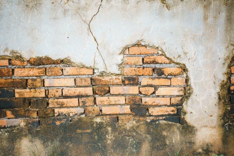 Треснутая конкретная кирпичная стена стоковая фотография rf
