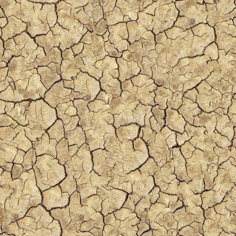 Треснутая почва Брайна. Безшовная текстура. стоковые фото