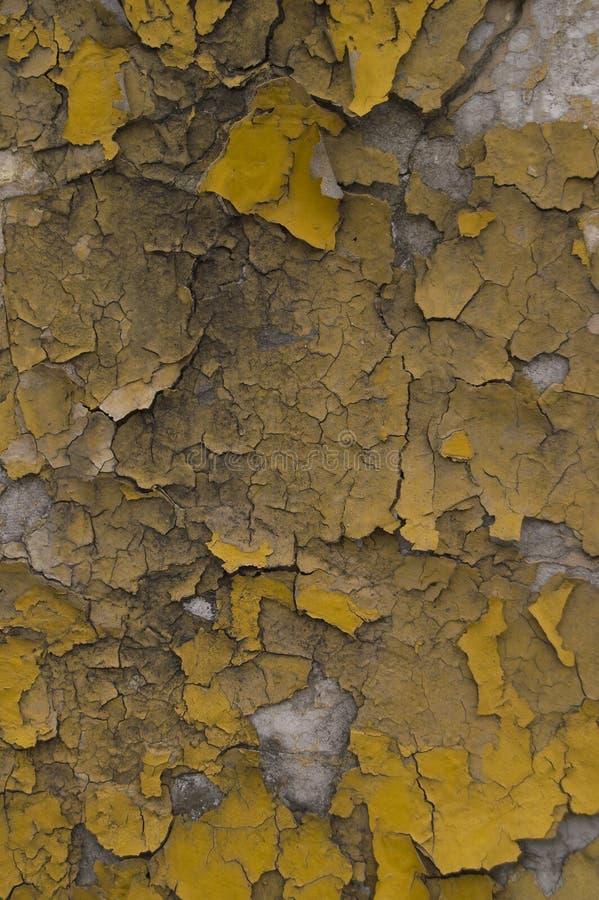 Треснутая серая желтая старая стена стоковое изображение rf
